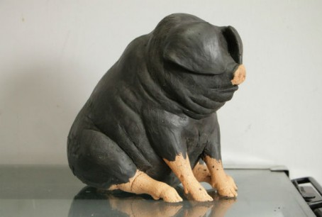 An example of one of the pigs, pre-decoration