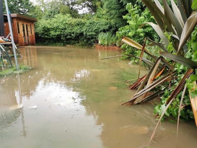 The scene in Joe's garden after the flood