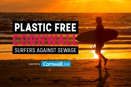 Plastic-Free-Image