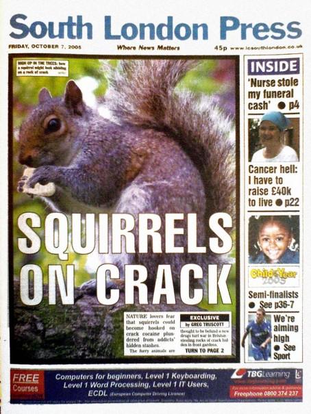 Squirrels on crack