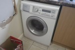 Teen convicted over cat's death in washing machine goes to IPSO