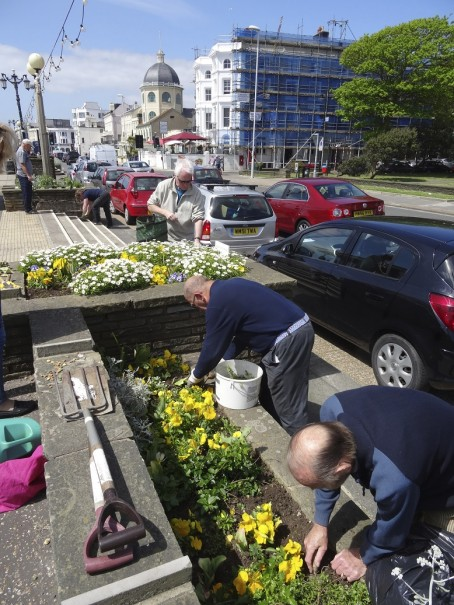 Readers taking part in last year's Journal planting campaign