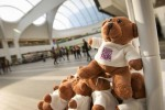 News site gives out hundreds of teddy bears to promote campaign