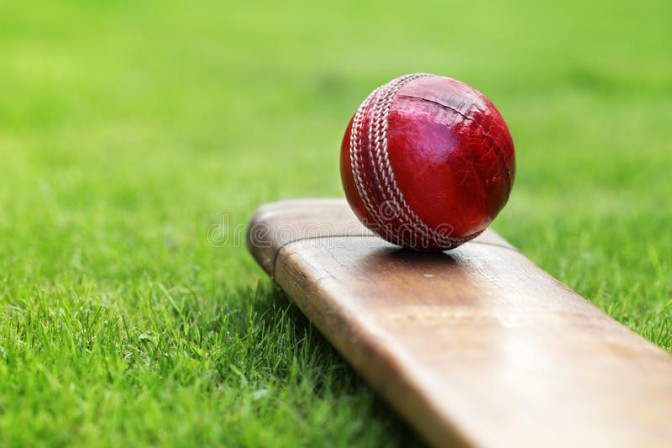 cricket new