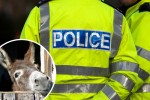 Police blame journalists' 'donkeys and sex' queries as they consider FoI charge